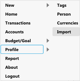 AccPal accounting - import tags